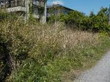 千葉県富里市七栄字獅子穴649番693 土地 物件写真