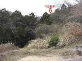 神奈川県伊勢原市善波字立石904番41 土地 物件写真