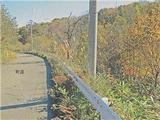 岩手県二戸郡一戸町奥中山字西田子1174番55 農地 物件写真
