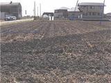 宮城県東松島市矢本字不動前258番1 農地 物件写真