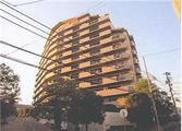 東京都江東区東砂一丁目36番地1 マンション 物件写真