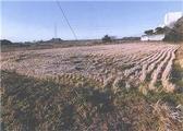 愛知県豊橋市西七根町字奥足田口159番 農地 物件写真
