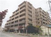東京都東久留米市下里五丁目659番地1 マンション 物件写真