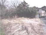 滋賀県近江八幡市長光寺町字石熊地198番 農地 物件写真