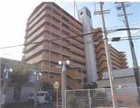 大阪府泉佐野市日根野7194番地 マンション 物件写真