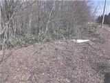 岩手県八幡平市松尾寄木第1地割1591番12 土地 物件写真