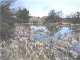 長野県小諸市大字山浦字上赤石4831番 農地 物件写真