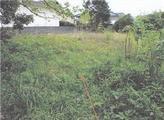 静岡県沼津市鳥谷字時永441番 農地 物件写真