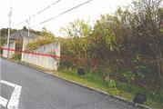 兵庫県神戸市北区柏尾台17番4 土地 物件写真