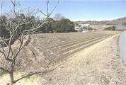 兵庫県三木市細川町垂穂字西端1791番 農地 物件写真