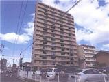 愛知県江南市古知野町瑞穂 96番地 マンション 物件写真