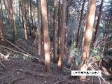 三重県津市安濃町今徳字東前山542番 土地 物件写真