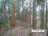 三重県津市安濃町今徳字青谷566番1 土地 物件写真