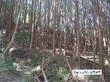 三重県津市安濃町今徳字細山田533番 土地 物件写真
