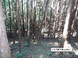 三重県津市安濃町今徳字青谷568番 土地 物件写真