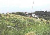 沖縄県中頭郡中城村字新垣上原78番 土地 物件写真
