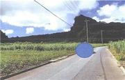 沖縄県中頭郡読谷村字長浜東表原3190番 農地 物件写真
