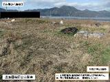 島根県出雲市大社町中荒木1404番 土地 物件写真