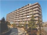 愛知県豊明市阿野町藤手 3番地1、2番地 マンション 物件写真