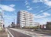 神奈川県藤沢市高倉字上谷戸684番地1 マンション 物件写真
