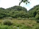 三重県鳥羽市浦村町字大潟498番 土地 物件写真