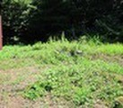 新潟県見附市本町3丁目414番 土地 物件写真