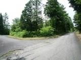 岡山県真庭市蒜山下徳山字税納1089番167 土地 物件写真