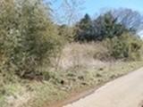 茨城県鹿嶋市大字武井字柿木久保1795番 土地 物件写真