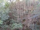 広島県東広島市高屋町造賀10148番122 土地 物件写真
