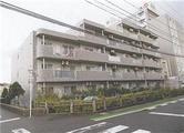 新潟県新潟市中央区新和二丁目156番地16 マンション 物件写真