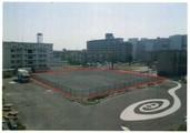 宮城県多賀城市桜木3-212-6 土地 物件写真
