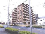 埼玉県春日部市小渕字前田208番地3、207番地3 マンション 物件写真