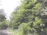 神奈川県足柄下郡箱根町仙石原字太郎嶽1108番12 土地 物件写真