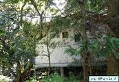 静岡県区画番号14-2,伊豆の国市奈古谷2225番239 戸建て 物件写真