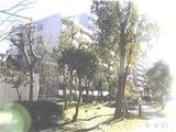 大阪府大阪市住之江区南港中五丁目1番地3 マンション 物件写真