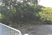 奈良県御所市大字三室623番3 土地 物件写真