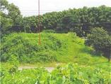 宮崎県延岡市貝の畑町2628番2 農地 物件写真