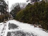 茨城県小美玉市幡谷字諏訪山451番6 土地 物件写真